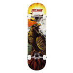 Tony-Hawk-Rula-hawk-roar