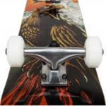 Tony-Hawk-Rula hawk roar1