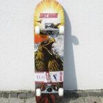Tony-Hawk-Rula hawk roar2