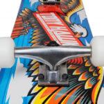 Tony-Hawk-Rula Wingspan1