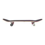 rad-dude-crew-complete-skateboard-Checkers2