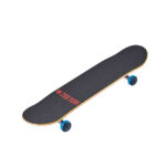 zoo-york-complete-skateboard-i6